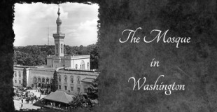 The Mosque in Washington